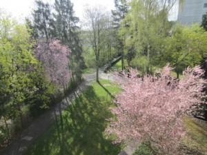 April in Germany