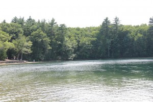 Walden Pond July 2013
