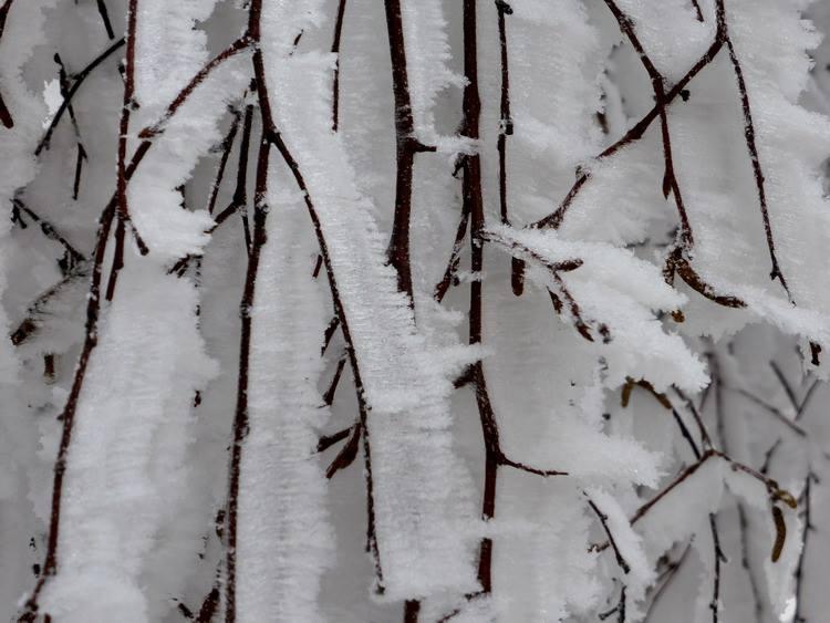 Feldberg Schnee Dez 2014