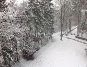 Snow December 2014